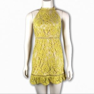 Fashion Union Mustard Lace Halter Mini Dress